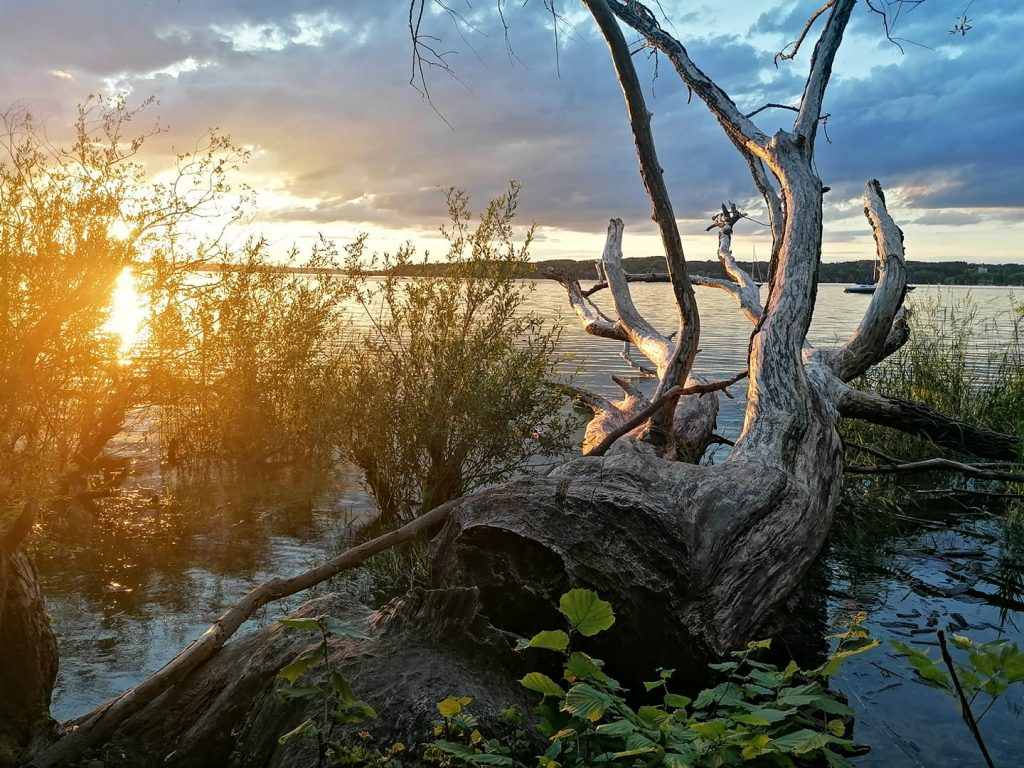 UNDER WATER Im Zwischenreich von Land und Wasser, an den Unschärfe-Bereichen von Traum und Realität... Einladung zum Portraitieren in der Magischen Zone