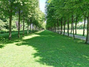 Im Park von Schloss Schleißheim