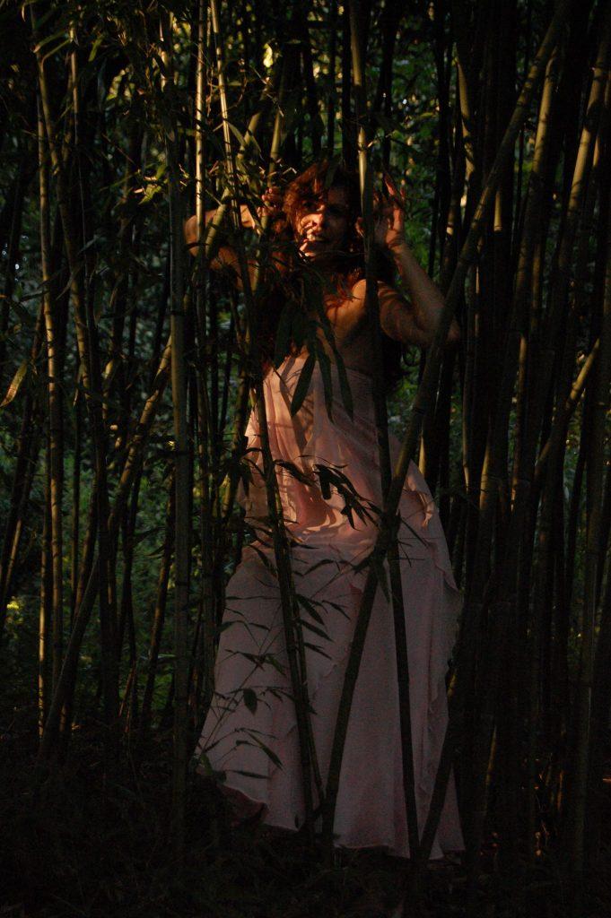 Gefangen vom Zauber des Bambus-Waldes